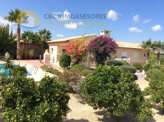 Beautiful 3 bedroom villa with pool